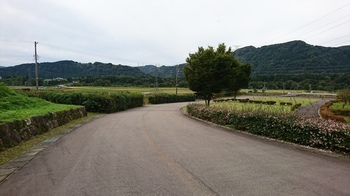 DSC_3401.JPG